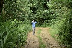 UPD - Unidade de Pesquisa de Ubatuba (Olhar do Panda) Tags: observação passaros bi bird birdwatching fotografesempre fotografiadepassaro passarosbrazil udp observacao de