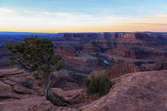 Sometimes Life Seems to Stretch on Forever (Synapped) Tags: dead horse point utah colorado river crook sunrise red rock water tree