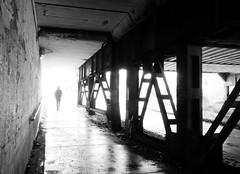Stroll under the bridge (Thiophene_Guy) Tags: thiopheneguy originalworks xz1 olympusxz1 intothelight backlighting contrejour camerawrappedinbreadbagtapedclosedarounduvfilter