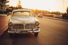 Golden street (ninasclicks) Tags: car vintagecar golden goldenlight goldenstreet goldenhour classiccar