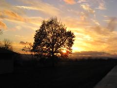 O Jesu, schöner Morgenstern (amras_de) Tags: abend vespre vecer aften evening vespero ilta vespere sera vesper vakaras avond kveld seara forenicht kväll aksam sonnenuntergang escureixito ocàs soumrak solnedgang sunset ocaso päikeseloojang auringonlasku coucherdesoleil zalazaksunca tramonto soloccidens saulelydis riets zonsondergang soleglad zachódslonca pôrdosol apus scurata dayset západslnka solnedgång