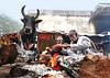 Biting cold (chinmaymohapatra) Tags: winter cold downtown odisha oldtown fire bull indian india bhubaneswar nikonflickraward