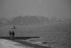 Fishing in the snow... (xarkef) Tags: fisherman fishing snow cold sea coast chilly snowing black white