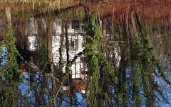 Spiegelung (ingrid eulenfan) Tags: leipzig elsterbecken flus elster spiegelung reflexion haus