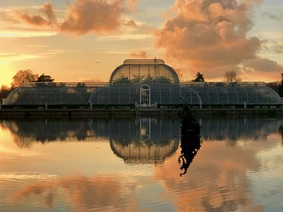 Sunset at palm house