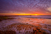 Seaside at sunset (Simon Huynh) Tags: santacruz seaside seasccape coastline highway1 clouds