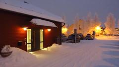 IMG_4368 (Mr Thinktank) Tags: raureif frost