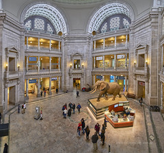 Museum Panorama (Valley Imagery) Tags: museumofnaturalhistory museum dc washington panorama tamron sony a99ii foyer day 1530 stitched smithsonian