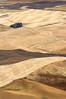 2017_08_24_2907-PS (DA Edwards) Tags: washington eastern palouse hills steptoe butte fields wheat harvest abstract minimalism color patterns da edwards photography summer 2017