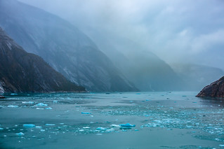 Endicott Arm Fjord, Alaska