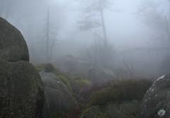 MistOfTime (Tony Tooth) Tags: nikon d7100 nikkor 35mm f18g mist misty fog foggy rocks rocky hillside january hencloud upperhulme staffs staffordshire staffordshiremoorlands peakdistrict