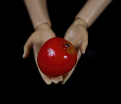 My Favourite Novel (Fiction) -Twilight (Millie (On and Off)) Tags: glass apple miniature barbie doll hands blackbackground twilight novel series myfavouritenovelfiction macromondays vampire werewolf fantasy fiction red soe