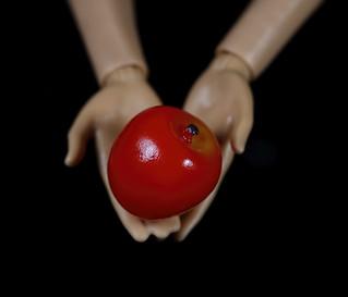 My Favourite Novel (Fiction) -Twilight