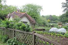 IMG_4609 (avsfan1321) Tags: london england uk unitedkingdom stjamesspark duckislandcottage heron garden