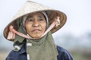 Field Worker, Vietnam