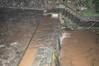 Ψίνθος (Psinthos.Net) Tags: χαλαζόπτωση χαλάζι καταιγίδα ψίνθοσ ρόδοσ hail hailstorm storm psinthos rhodes rhodos rodos μπόρα νυχτερινήκαταιγίδα nightstorm winter january ιανουάριοσ γενάρησ χειμώνασ νύχτα night βράδυ βράδυχειμώνα χειμωνιάτικοβράδυ νύχταχειμώνα χειμωνιάτικηνύχτα βρύση βρύσηψίνθοσ vrisi vrisiarea vrisipsinthos rain βροχή νερό water torrentarea torrent χείμαρροσ καταρράχτησ καταρράχτησψίνθου waterfall πλάκα steps stair σκάλα σκαλιά χόρτα greens groove αυλάκι