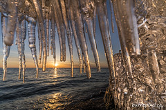 Icy Sunrise (burntpixel.ca) Tags: canada manitoba winnipeg photo photograph fine art patrick mcneill burntpixel wrench777 beautiful amazing sony a7r2 a7rii sonya7r2 rural winter ice icicles icicle sunrise sunset sunlight lake wide hanging voigtlander