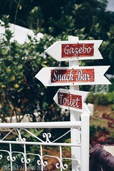 Cebu's Sirao Garden - Little Amsterdam (Kristina A. Foto) Tags: siraogarden cebu littleamsterdam philippines flowers nature travel visayas