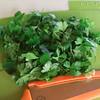 Perejil (Romi.90) Tags: perejil cilantro green food huerta