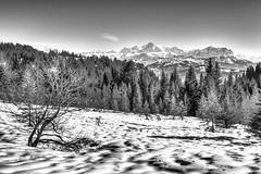 Mont-Blanc (artsphotography.fr) Tags: montblanc montagne mountain neige snow