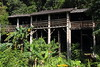 bngishakEOS 7D 0028794 (bngishak (On/Off)) Tags: bngishak canoneos7d ef24105mmf4lisusm kampungbudayasarawak sarawakculturalvillage thelivingmuseum oranguluhouse wood tree