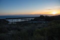 Gaviota Sunset (ScholzRUNNER) Tags: amtrak amtrakcalifornia amtrakamerica coastline socal southerncalifornia california trains transportation railroad gaviota bridge bridges trestle coaststarlight