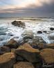 Sunset Cliffs Perch (adamsarasin) Tags: wateroverrocks waves water ocean seagull sunset sunsetcliffs beach oceanbeach sandiego nisi filter sonya7ii