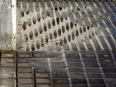(Joan Pau Inarejos) Tags: baixllobregat 2018 enero reflejo geometría formas agua humedad espejo acera arquitectura curiosas curiosidades abstracta abstracción