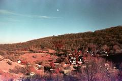 film (La fille renne) Tags: film analog 35mm lafillerenne canonae1 50mmf18 owax owaxinfraredcolor400 infrared infraredfilm landscape pink orangefilter