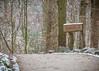 Wildpark MV 04.02.2018 (Zarner01) Tags: wildpark mv güstrow nup tierpark tiere säugetier mecklenburg vorpommern deutschland germany natur animals outdoor wild luchs canon dammwild wölfe raubtierwg eos canoneos80d 80d ef 24105l 70200l isusm schnee winter albino 04022018
