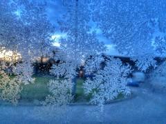 Mother nature's pattern by Julie Adams (julz.adams) Tags: freezing freeze mothernature pattern paytern cold winter ice