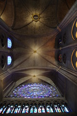 Notre Dame Cathedral (sarowen) Tags: notredame notredamecathedral notredamedeparis parisfrance paris france cathedral church stainedglass stainedglasswindow ceiling