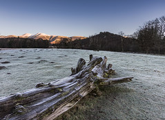 Chilly! (99damo) Tags: lakedistrict cumbria cold crag derwentwater d810 fells frozen frost grass ice january keswick morning nikon snow sunrise tree winter