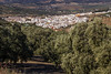 Spain - Malaga - Villanueva del Rosario (Marcial Bernabeu) Tags: marcial bernabeu bernabéu spain españa andalucia andalucía andalusia malaga málaga villanueva rosario village spanish andalusian español andaluz pueblo white blanco