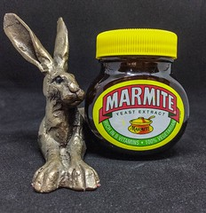 2018 - photo 029 of 365 - metal sculpture of hare with Marmite (old_hippy1948) Tags: snowshoehare hare sculpture marmite