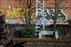 DFNs / Sado (Alex Ellison) Tags: dfn dfns sado sad northwestlondon trackside railway urban graffiti graff boobs