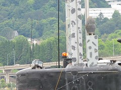 "USS Blueback SS-581 17 • <a style=""font-size:0.8em;"" href=""http://www.flickr.com/photos/81723459@N04/38697536395/"" target=""_blank"">View on Flickr</a>"
