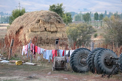 Bales, Laundry & Axles (peterkelly) Tags: kyrgyzstan shabdan chonkeminvalley haybales wheel tire axle laundry clothes hanging