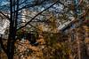 EOY.10159.1_2500 s.f_5.6.62.0 mm.4832.jpg (Jonitron) Tags: digitalphotography color tacomawa 2017 jonitron 28300mmf3556 nikon d610