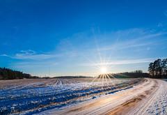 Icy road at sunset (Micael Carlsson) Tags: sunset road värmland stolpen väse väg