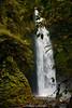 _DSC4808 (UdeshiG) Tags: bali indonesia asia waterfalls uluwatu seminyak tanahlot nikon ubud kuta paddy dogs balidogs travel traveltheworld
