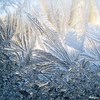 Winter Art - Art d'hiver