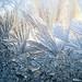 Winter+Art+-+Art+d%27hiver