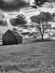 winter skies (MiguelHax) Tags: landscape barn sky clouds blackandwhite bw wb monochrome noiretblanc blackwhite