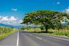 (Juan Camilo Londoño Gaviria) Tags: juancamilolondoñogaviria nikon3400 viterbo paisaje carretera sinfin