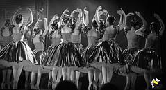 Elas Bailarinas (Marcelo Seixas) Tags: ballet dancing gold beautiful lovely cady action dance dança ballerina art bravo best arte passo class performace poise balerina balance artistic mulher linda woman boavista roraima brazil amazonia girl sapatilha star show apresentação boa vista espetáculo performances professional profissional ballo balé bailariana bailarino ballerino palco perfect perfeito perfeição musculos muscles young jovem danze danza tanz tones tons surreal love people photo photography portrait instagram kalizasharlaflores celular sansung marceloseixas angels balet baletka baletki baletky balett ballerinas