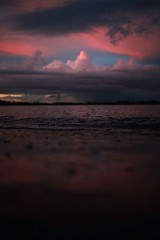 By drxgonfly See more pictures at : http://bit.ly/2Dz0MO3 (juliafinance1) Tags: nature photos picture wildlife waterfall best mother sunset water beach sky flower tree dogs cloud landscape sea summer birds river garden