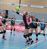 41171055 (roel.ubels) Tags: flynth fast nering bogel vc weert sint anthonis volleybal volleyball indoor sport topsport eredivisie 2018 activia hal