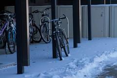 Arey Bikes (UWW University Housing) Tags: uww uwwhitewater uwwhousing winterbreak lifestyle snowfall