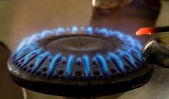 20180124_2597_7D2-100 Blue Flame #1 (johnstewartnz) Tags: 100mmmacro 100mmf28 canon7dmarkii canonapsc blueflame gascooker 100mm 7d 7dmarkii 7d2 apsc canon macro macromonday macromondays cooker flame gas eos